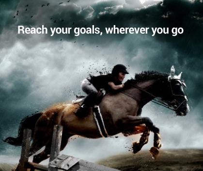 Nos dedicamos al transporte de caballos por todo el mundo.